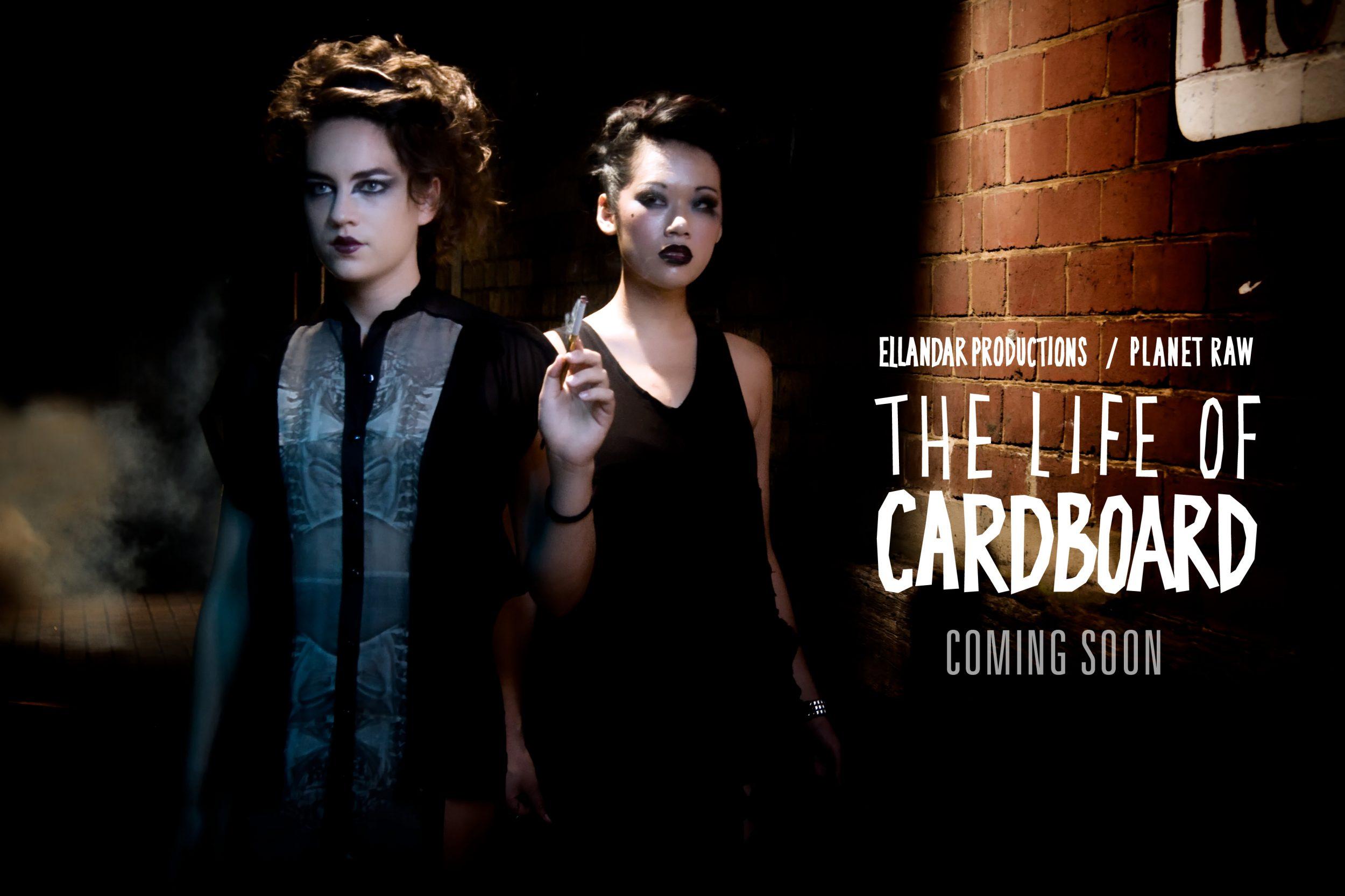 the-life-of-cardboard-4-1